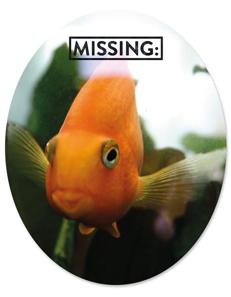 "Toilet Sticker ""Fish Missing"""