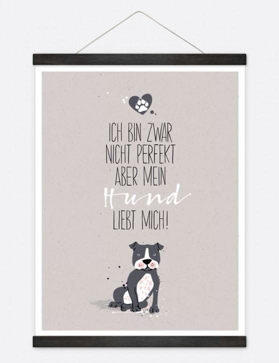 "Poster ""Hund liebt mich"""